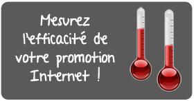 Auto-diagnostiquez l'efficacité de votre promotion sur Internet !