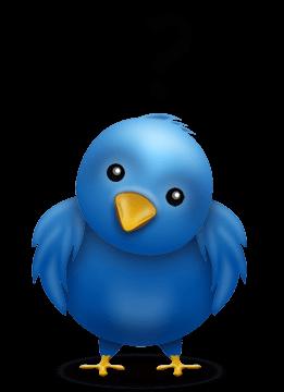 Twitter: Guide pour les nuls