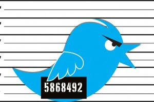 Comment utiliser Twitter Analytics pour mieux utiliser Twitter