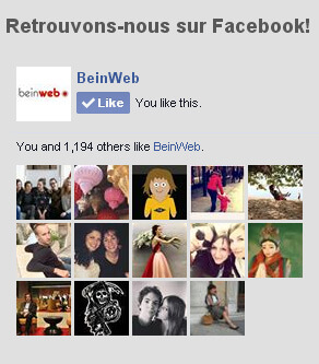 exemple-facebook-likebox